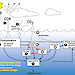 Schematic diagram indicates the result of ozone depletion of marine microbes and the resulting impact on global climate