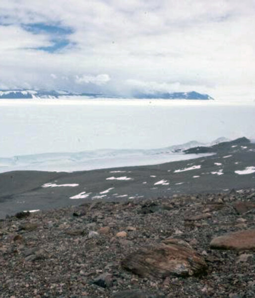 The site from which the Antarctic kimberlite samples were recovered, on the flanks of Mt Meredith, looking across the Lambert Glacier