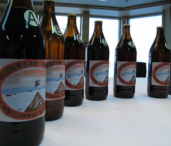 Row of beer bottles with labels showing