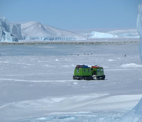 The Auster emperor penguin colony on sea ice surrounded by gigantic icebergs with the ice plateau in the background and a green Hägglunds all terrain vehicle in the foreground