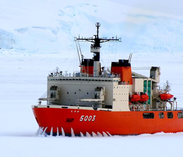 The Japanese icebreaker, Shirase, in the ice.