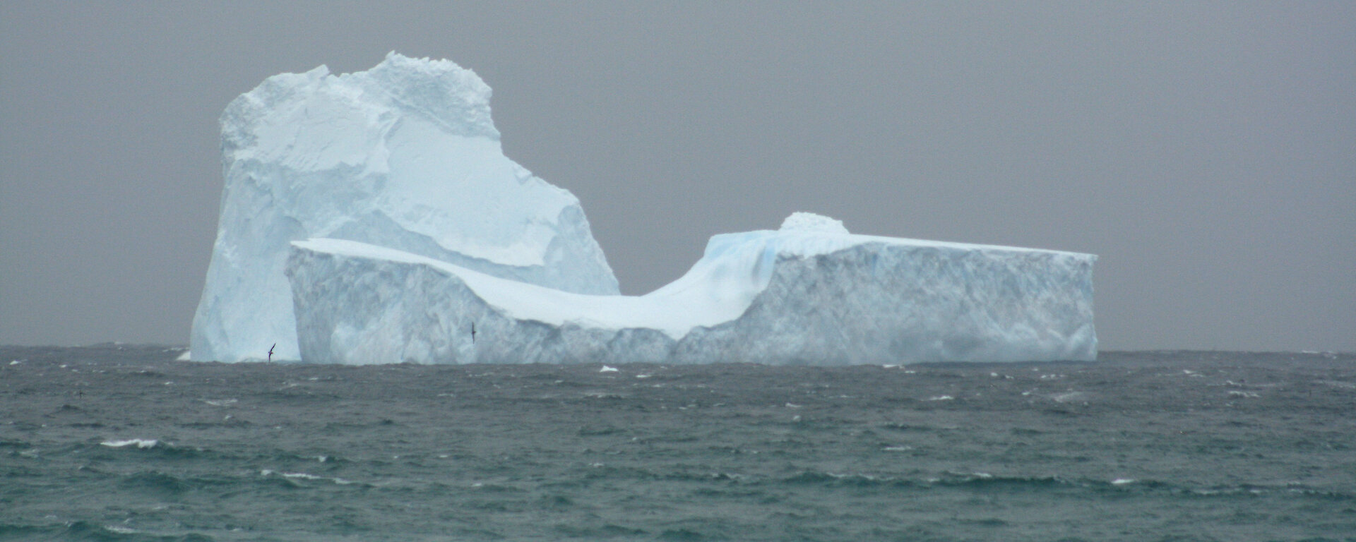 Close-up of iceberg in Garden Bay at the north end of Macquarie Island
