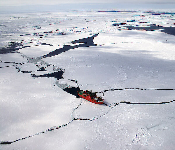 The Aurora Australis in sea ice