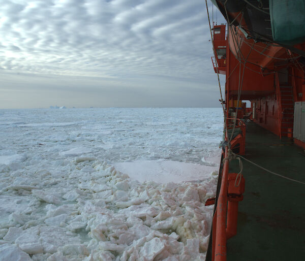 View of ice from port side of ship