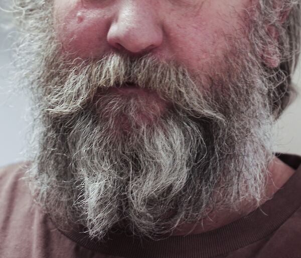 Photo of a man's face form the nose down with a white and grey-haired beard.