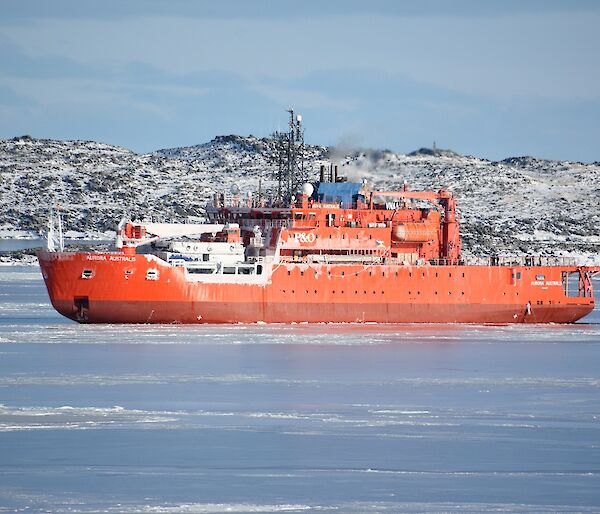 Large orange ice breaker ship in foreground. snow covered island in rear