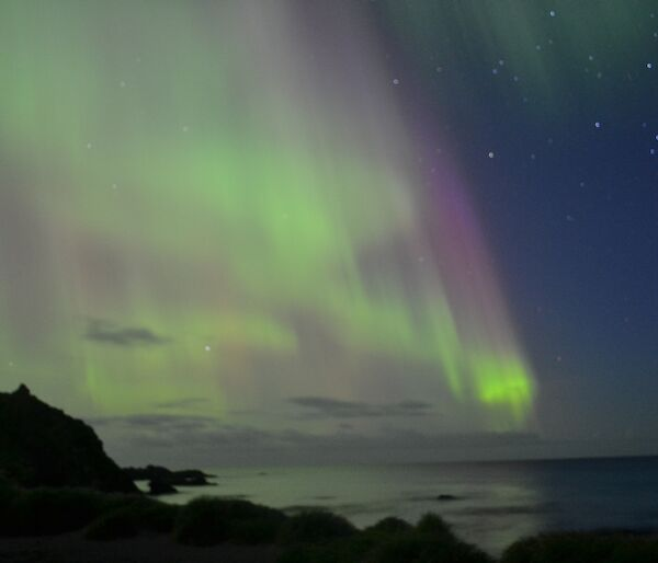 The light of an aurora dances just off shore at Macca
