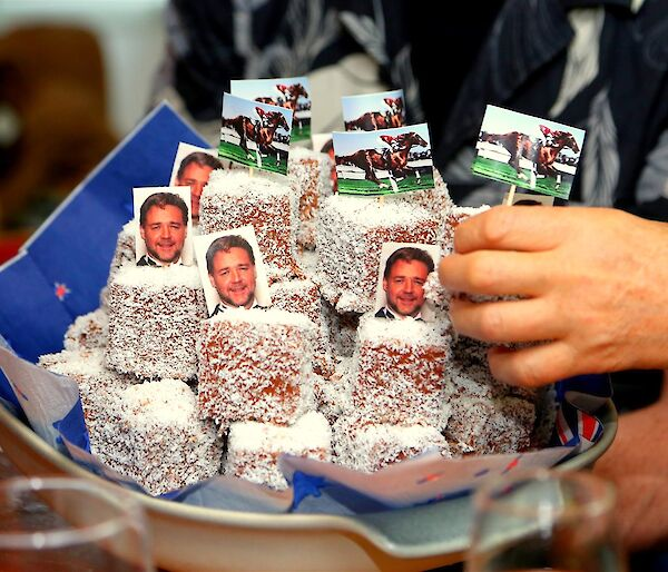 Plate of lamingtons