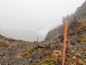 Top markers for the Jump Down heading into Far North Precarious Bay on a misty Macca day