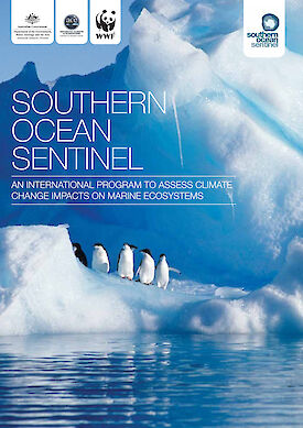 Southern Ocean Sentinel report cover