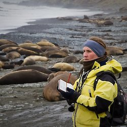 Expeditioner counting seals