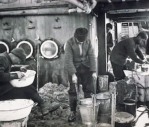Men peer into buckets and nets at tiny fish and animals hauled in from the sea