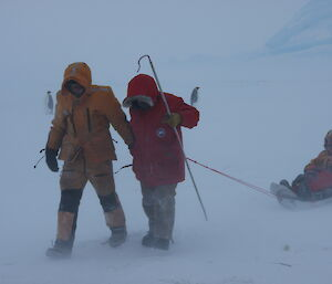 Two scientists walking in mist with shepherds' crooks, pulling other expeditioner on sled