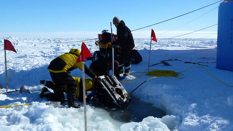 Scientists and support team deploy the Remotely Operated Vehicle (Photo: Kat Beams)