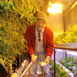 Expeditioner attending to the hydroponic vegetables