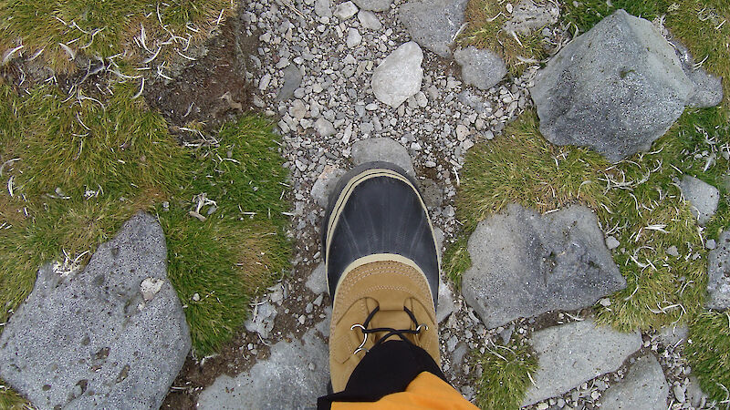 View of tourist's foot on the rocky path