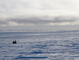 Two quads in the distance on the sea ice under a partly cloudy sky