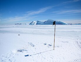 A black flag and bamboo cane in the foreground signify the drilling point amid an ocean of white sea ice and blue icebergs