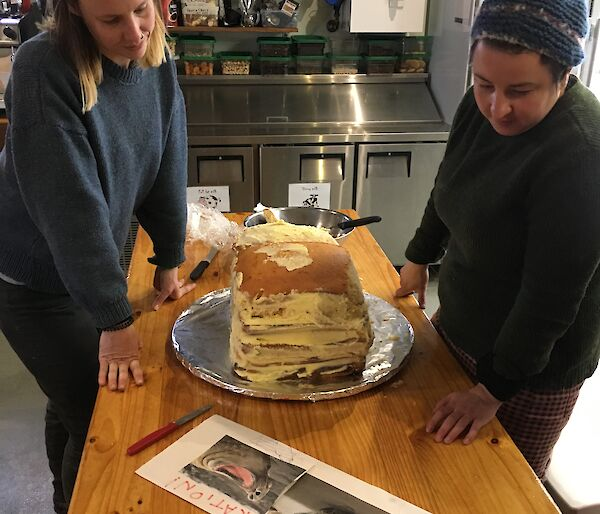 Two women have a layered cake in front of them and are looking at photos of elephant seals