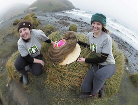 Two women hold a cake in the shape of an elephant seal on a green tussock with a beach behind them