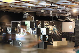 An exhibition of artwork relating to Living Data, at the University of Technology, Sydney