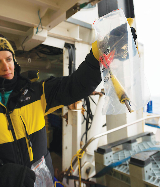 Dr Natalie Schmitt holding a whale biopsy sample during the six week Australia-New Zealand Antarctic Ecosystem Voyage in 2015.