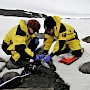 Dr Kathryn Brown (left) and Dr Catherine King collect soil samples amongst ice and rocks in Antarctica.