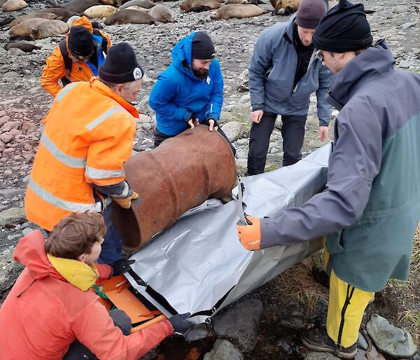 The fuel drum is loaded into the stretcher by keen members of the search and rescue team