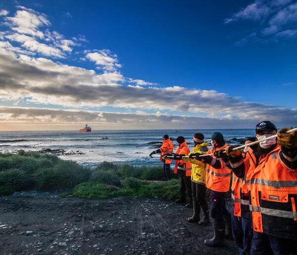 A line of expeditioners in hi-vis and wearing masks pull a fuel line in from the water to the shore.  A supply ship is visible just off shore.